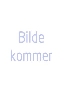 Ments Tore Møller